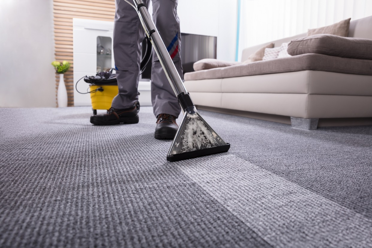 59 95 Whole House Carpet Cleaners