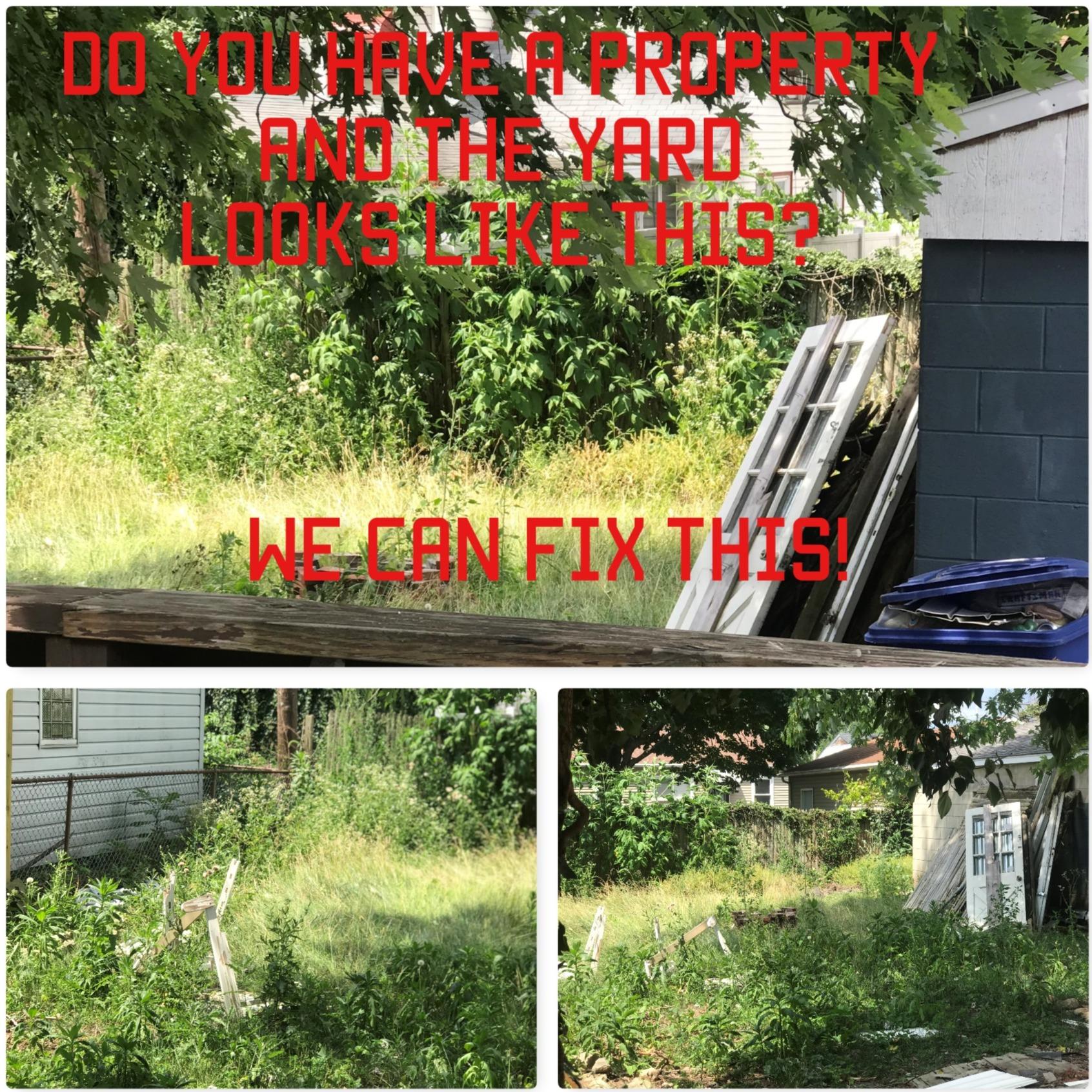 yard cleanin