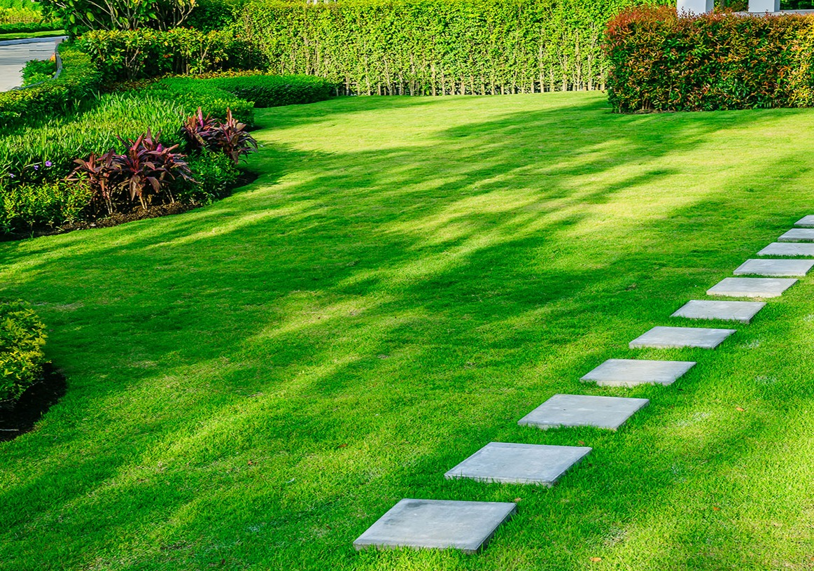 Artificial Grass & Synthetic Turf Installation