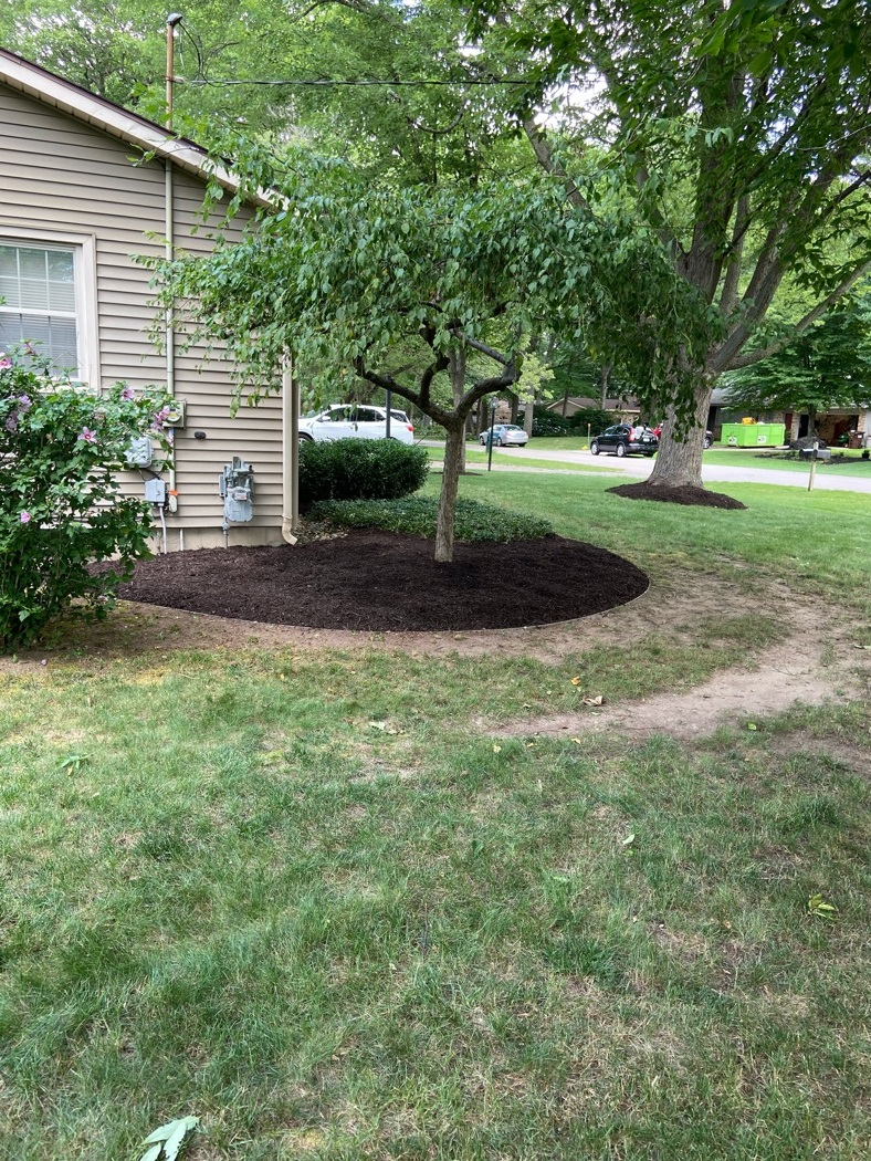 Timberline Landscaping Lawn Care Service In Rockford Mi