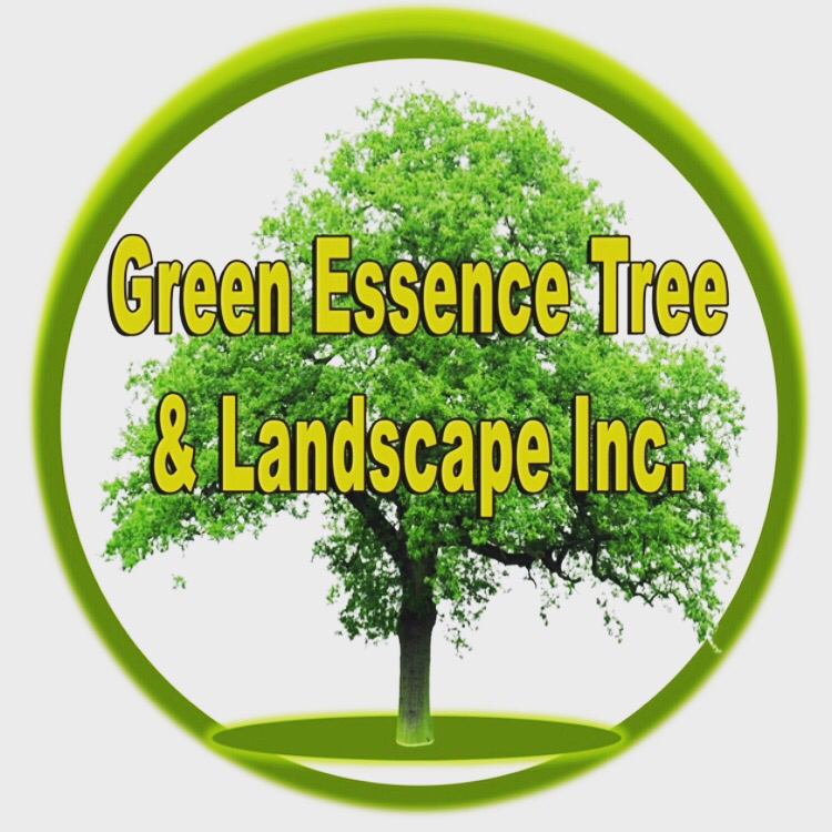 green essence tree & landscape logo