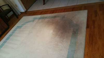 water damage cleaning mike silvia