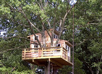 New Jersey Treehouse