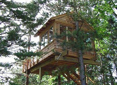 Cohn Treehouse
