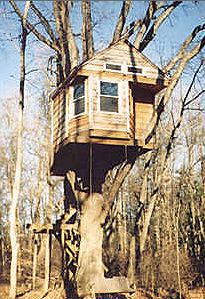 Tutin's Treehouse