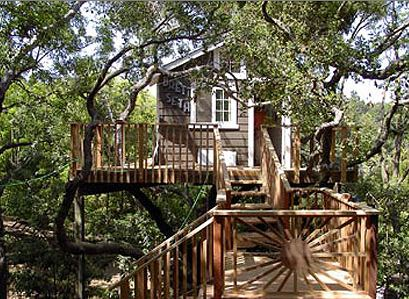 """City of Angeles"" Treehouse"