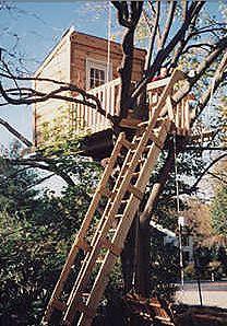 JT & S Treehouse