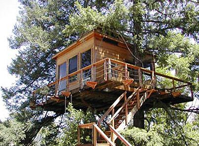 Fisher Treehouse