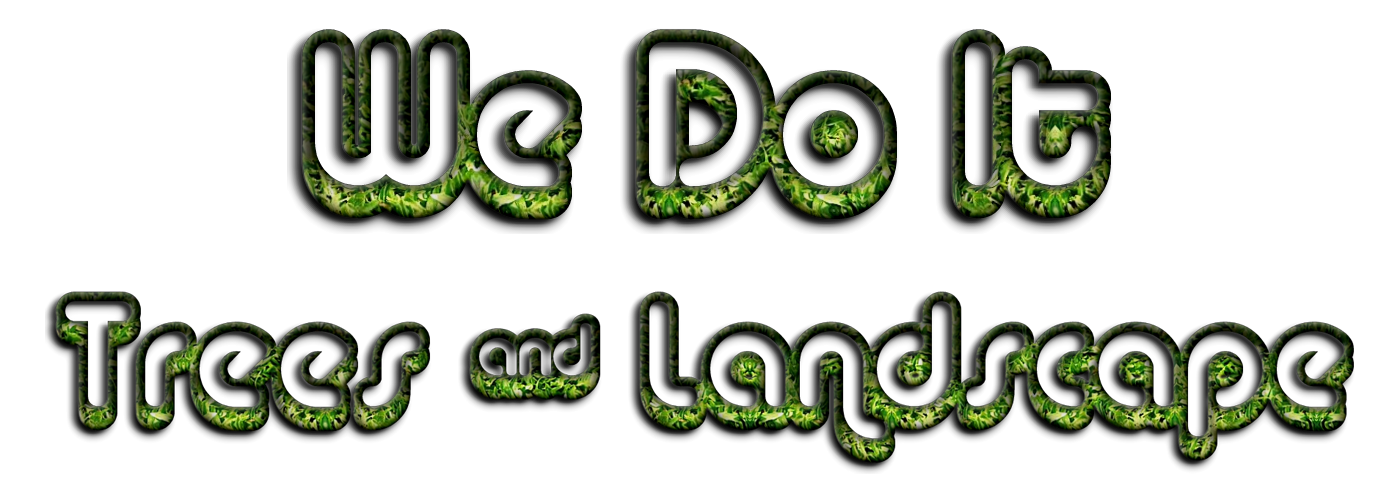 we do it all lawn care logo