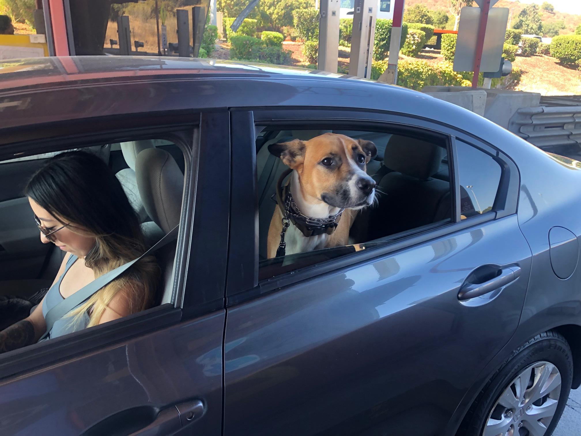 mommy car, minivan