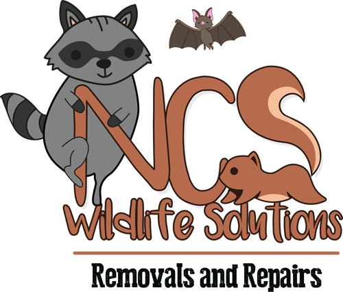 NCS wildlife solutions logo