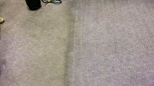 carpetmaster