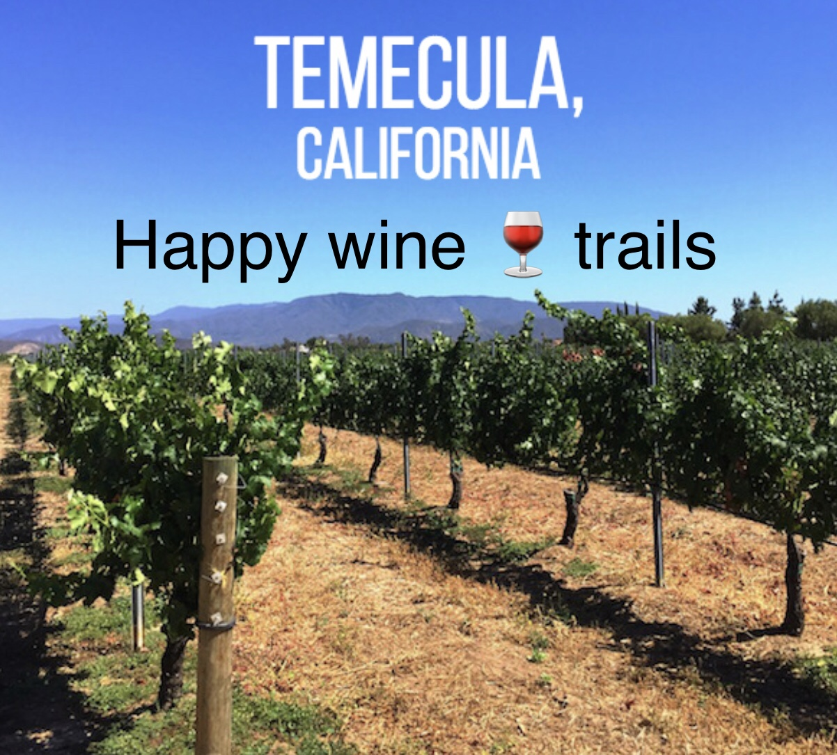 temecula valley wine